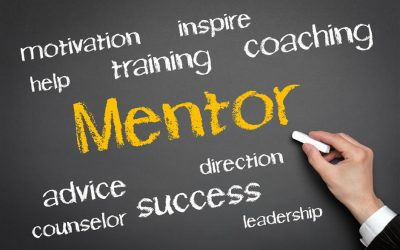 6 Reasons your Bid Team needs a Mentor